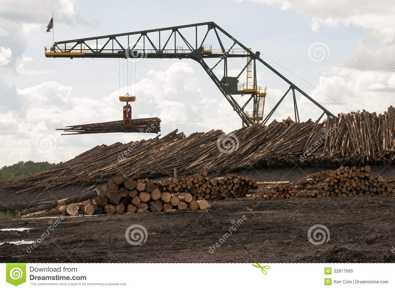 Log moving crane at lumber mill stock image image of for Mill log