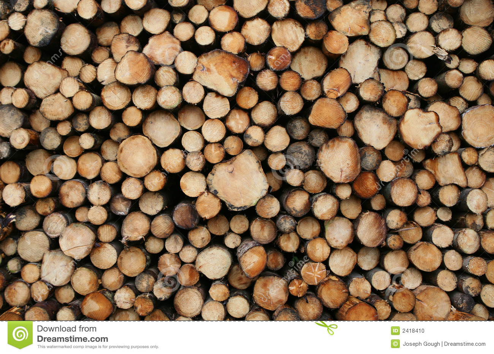 Log Pile Stock Photo Image 2418410