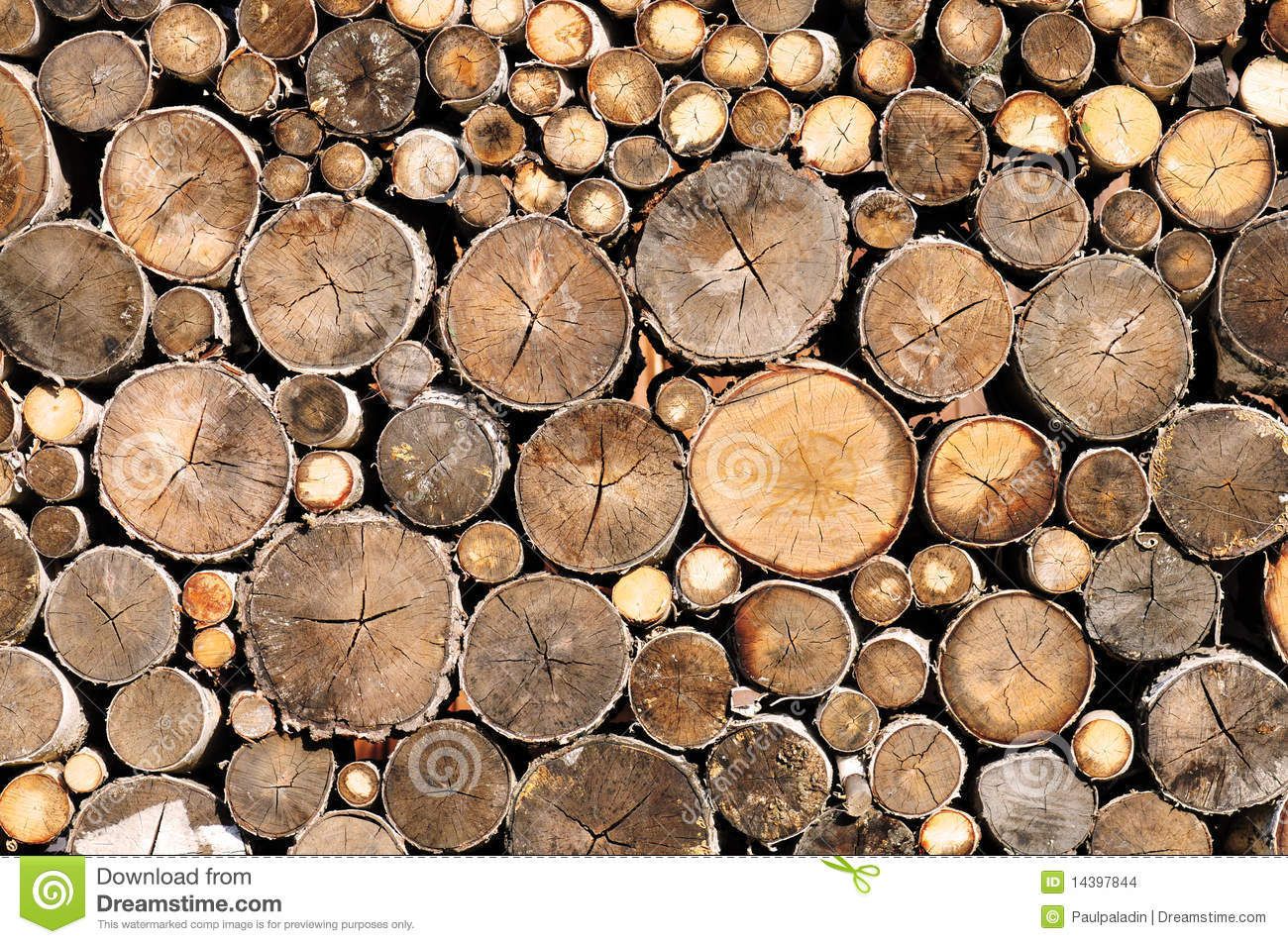 Log wood texture stock photo image of circle
