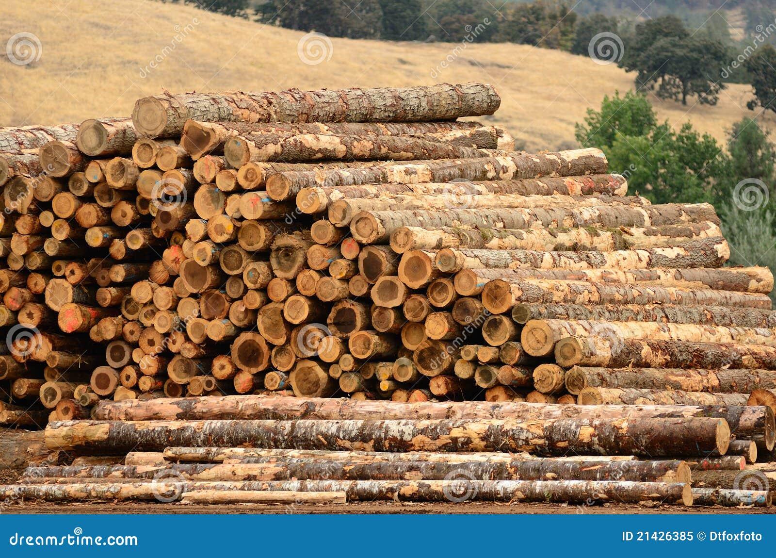 Log Yard Royalty Free Stock Photo Image 21426385