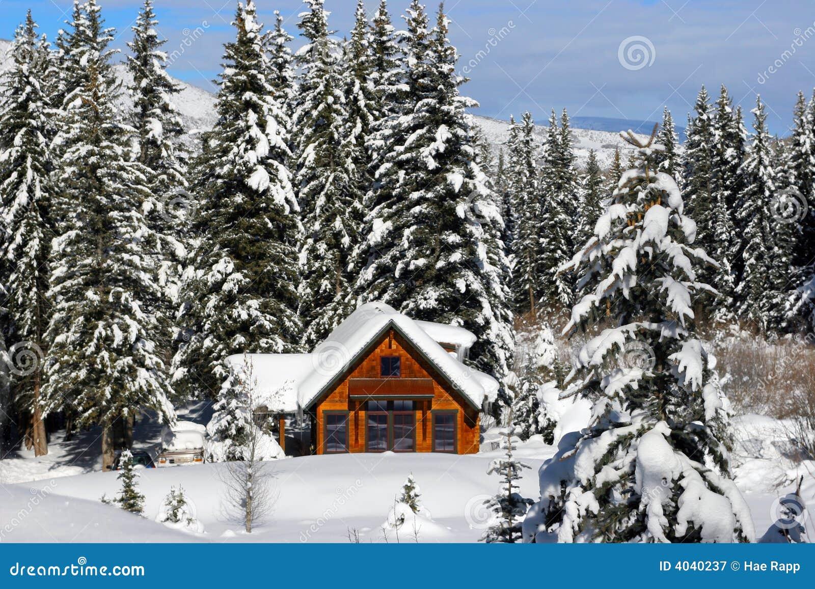 Log zimy domowa