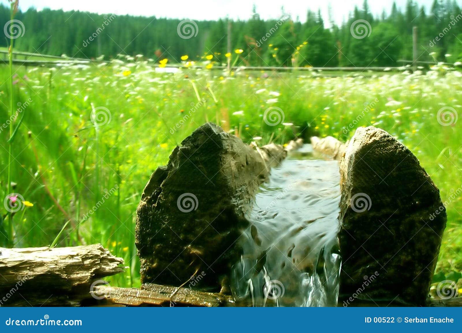 Logarithme naturel avec l eau doux