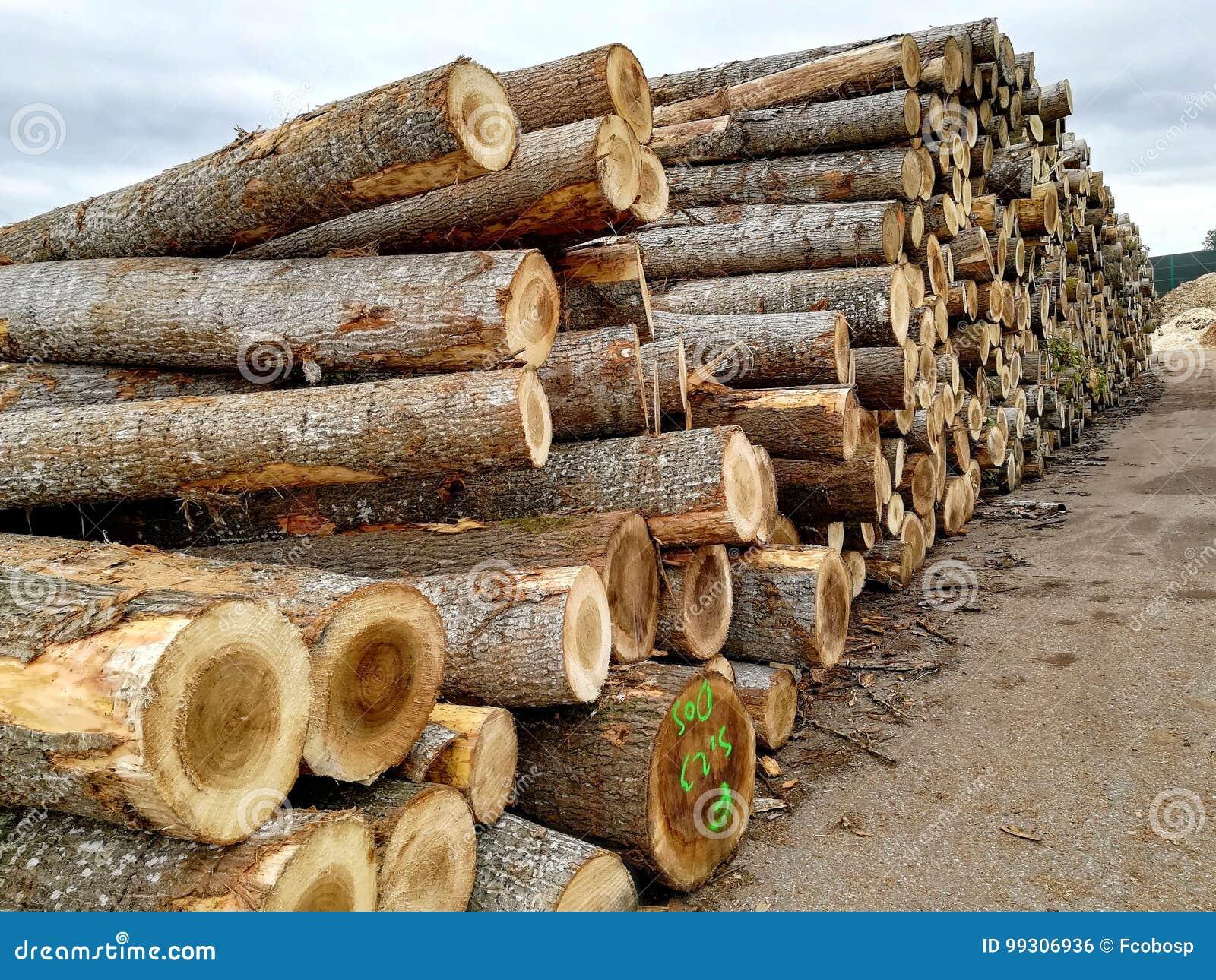 Logarithmes naturels en bois