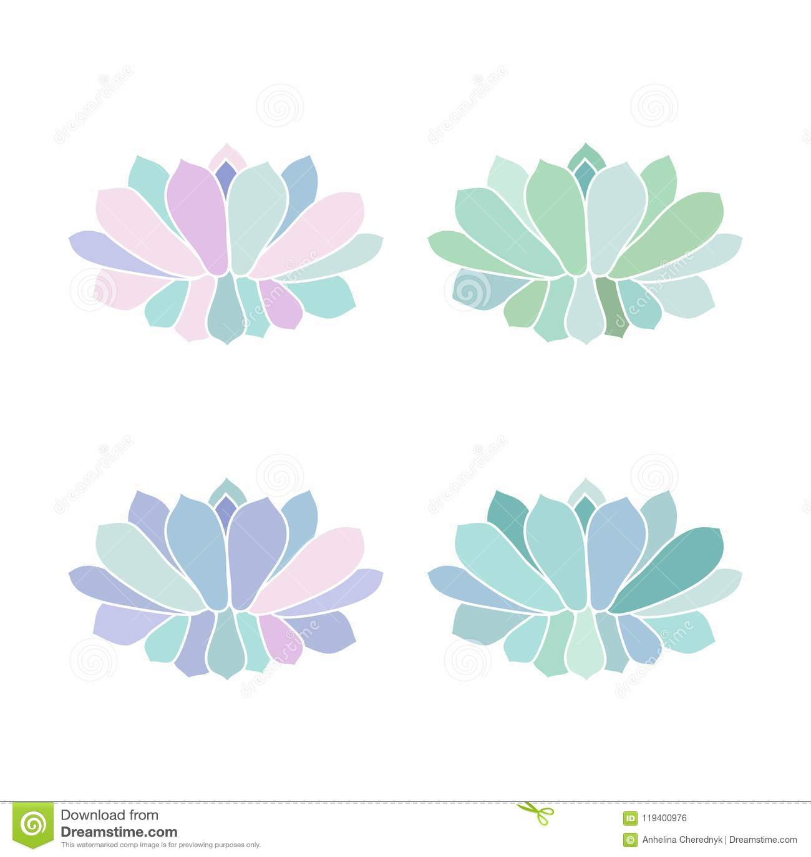 Logez Le Succulent En Pastel S De Turquoise Pourpre Rose De ...