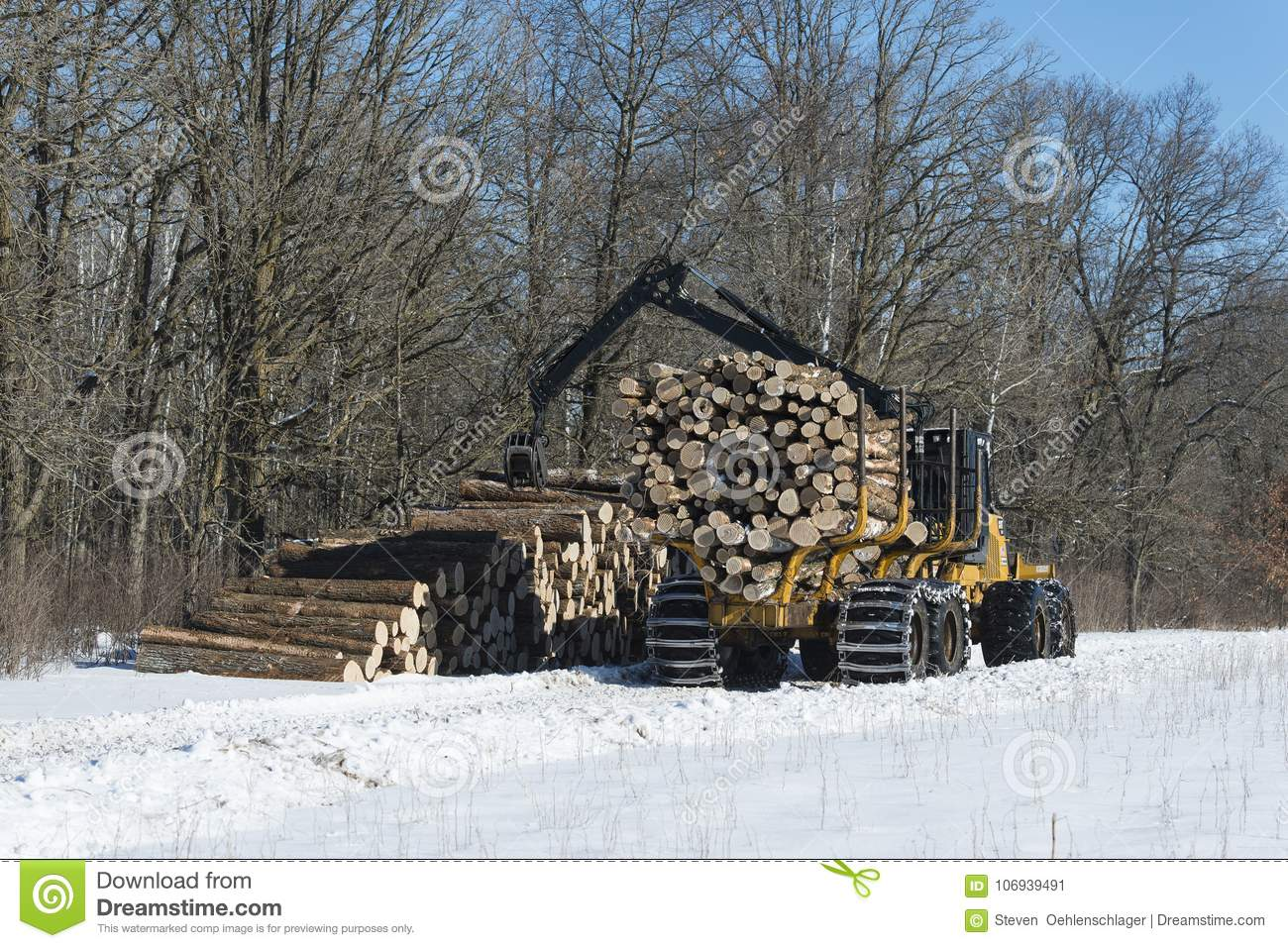 Logging in a central Minnesota forest