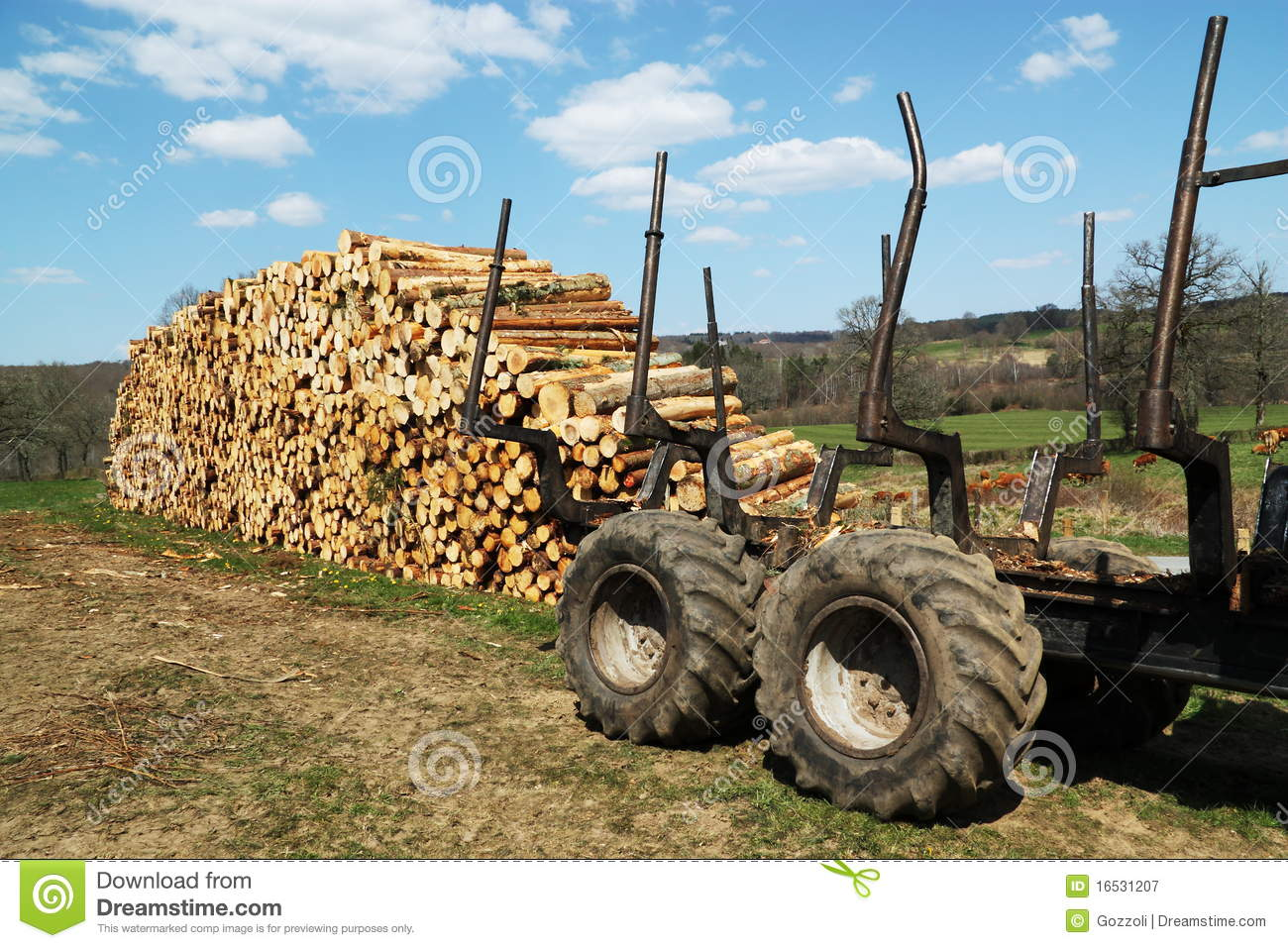 logging industry Because alabama is one of the most heavily forested states in the nation, the forestry products industry has played a large role in the state's economy developing first as the timber.