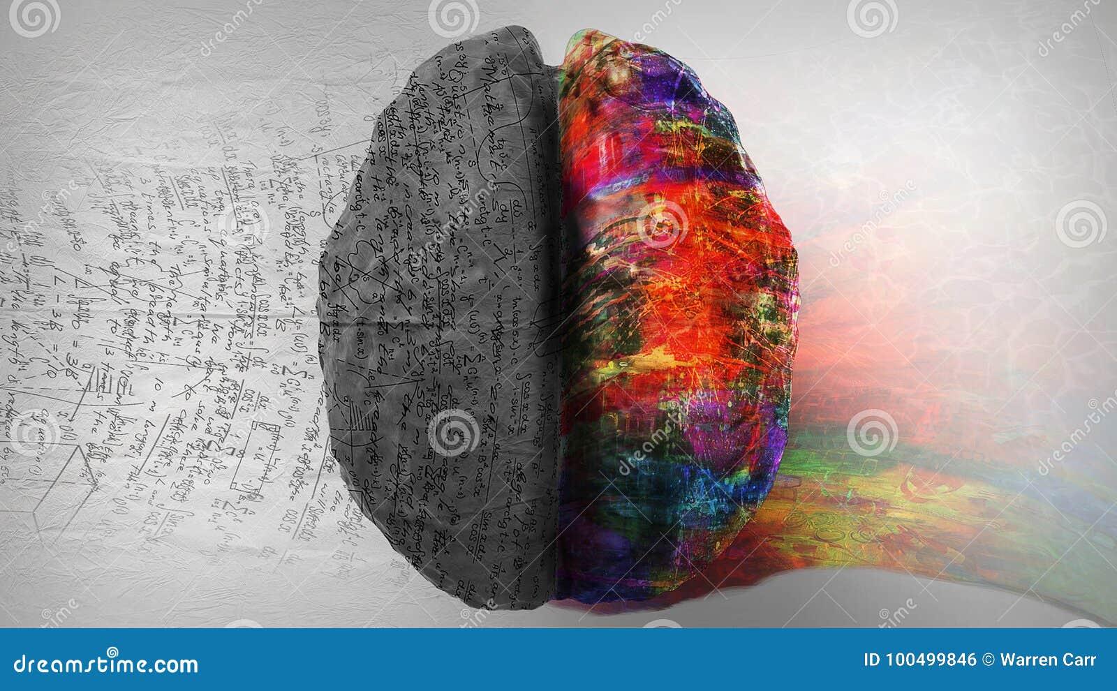 Logik Gegen Kreativität - Rechte Seite/linke Seite Vom Menschlichen ...