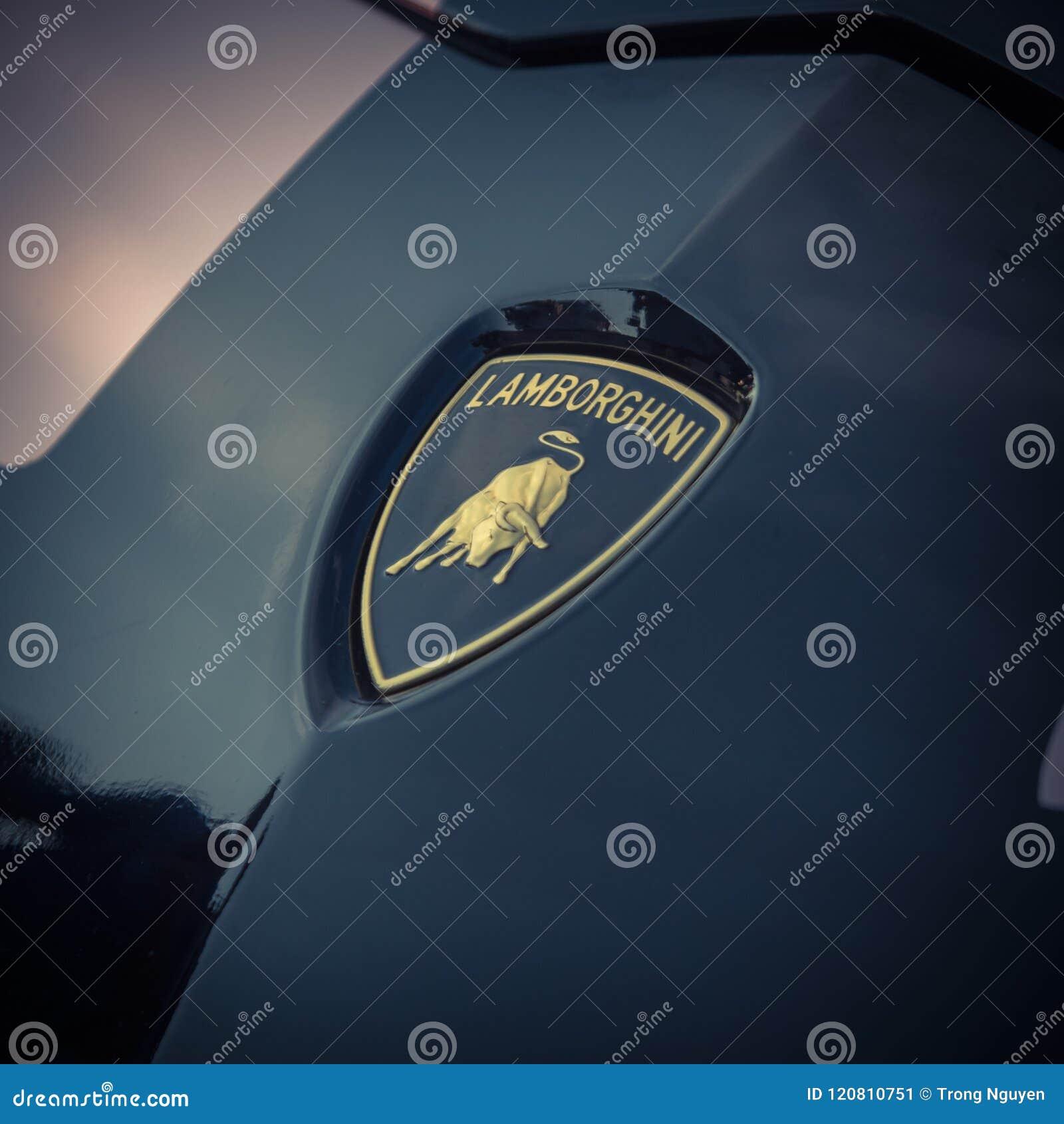 Logo d annata del 2018 Rose Gold Chrome Aventador di Lamborghini di tono