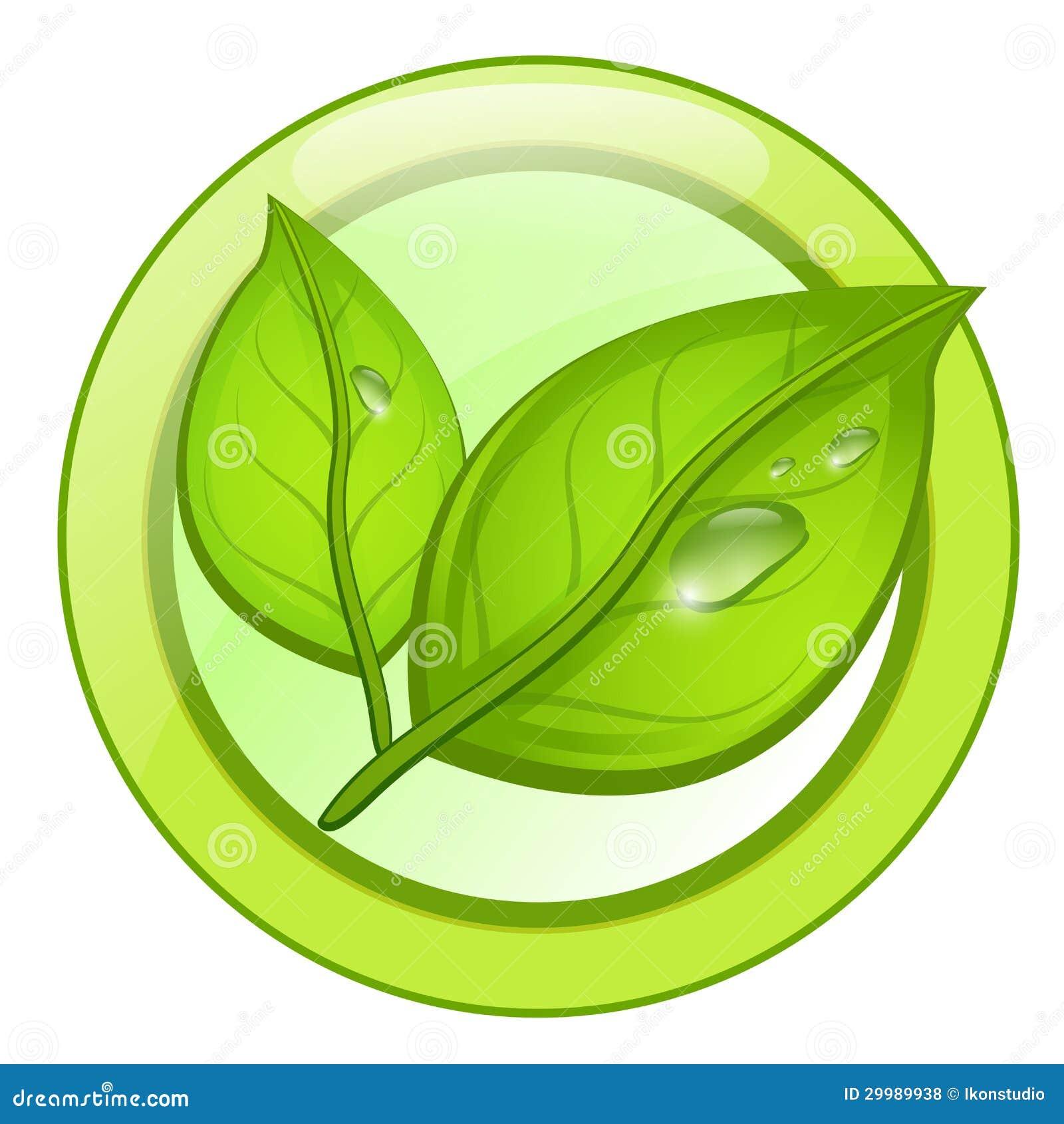 foto de Logo Verde Della Foglia Di Eco Con Le Gocce Di Acqua