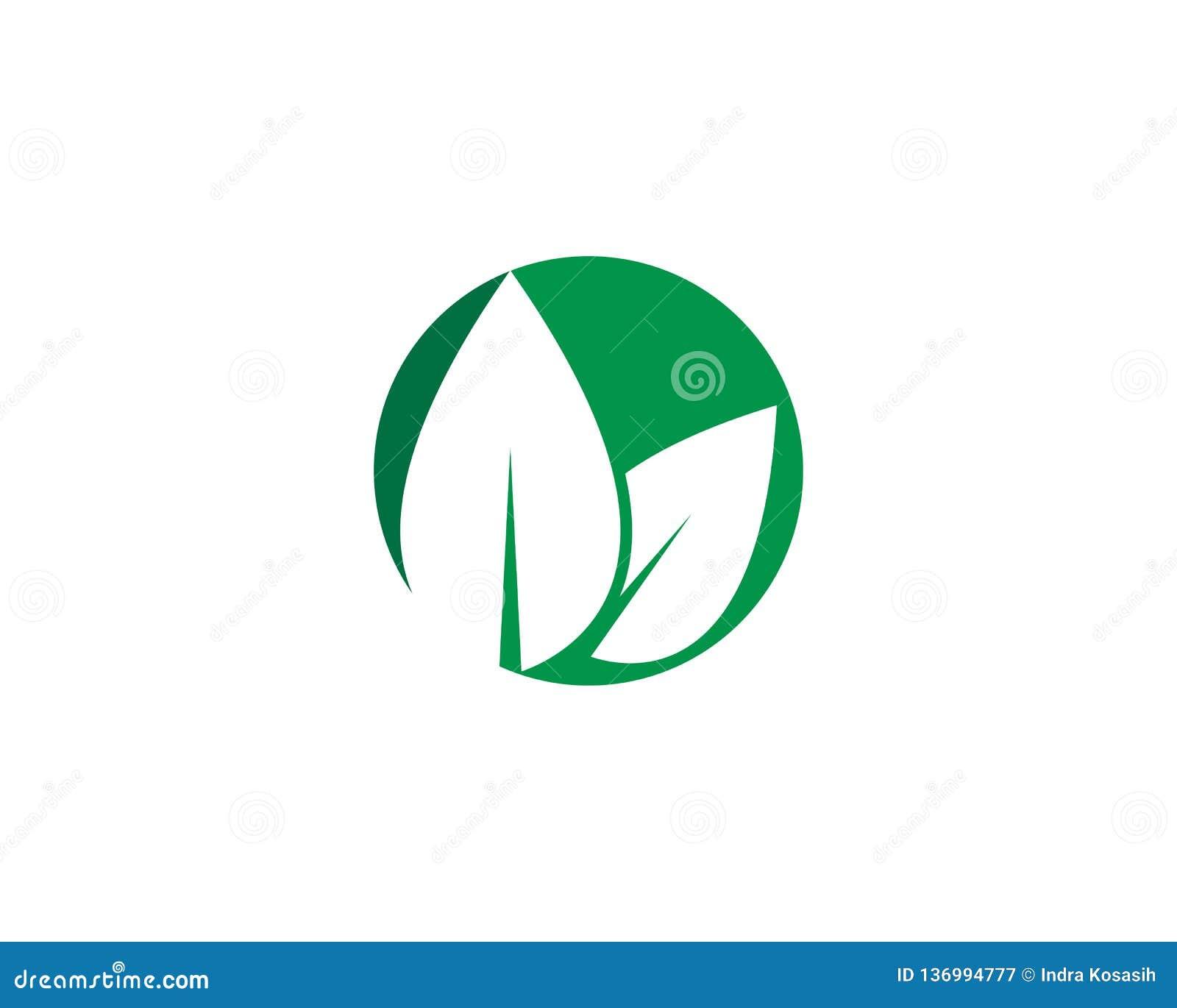 Logos de l écologie verte de feuille