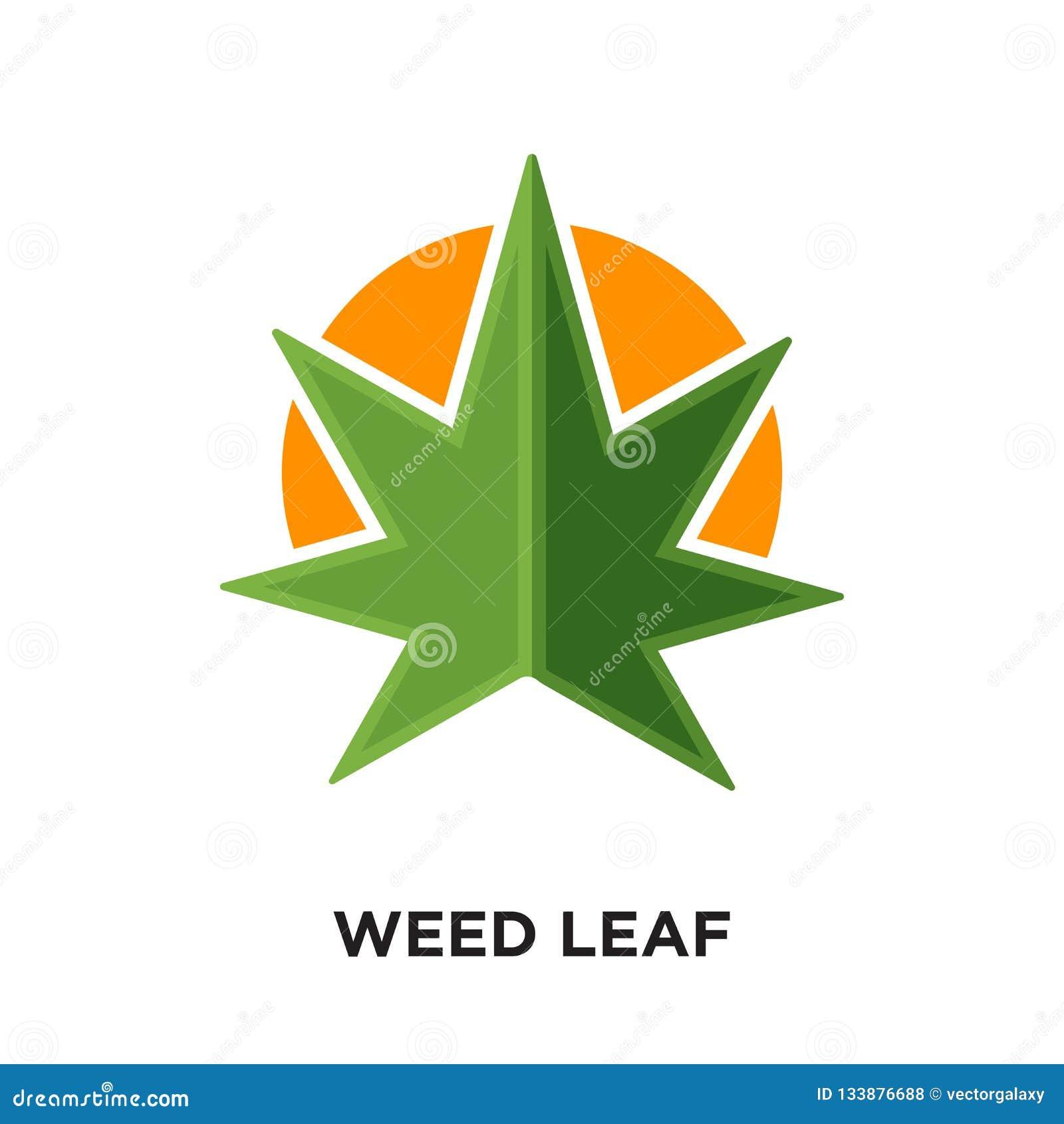 Logotipo da folha da erva daninha isolado no fundo branco para sua Web, móbil