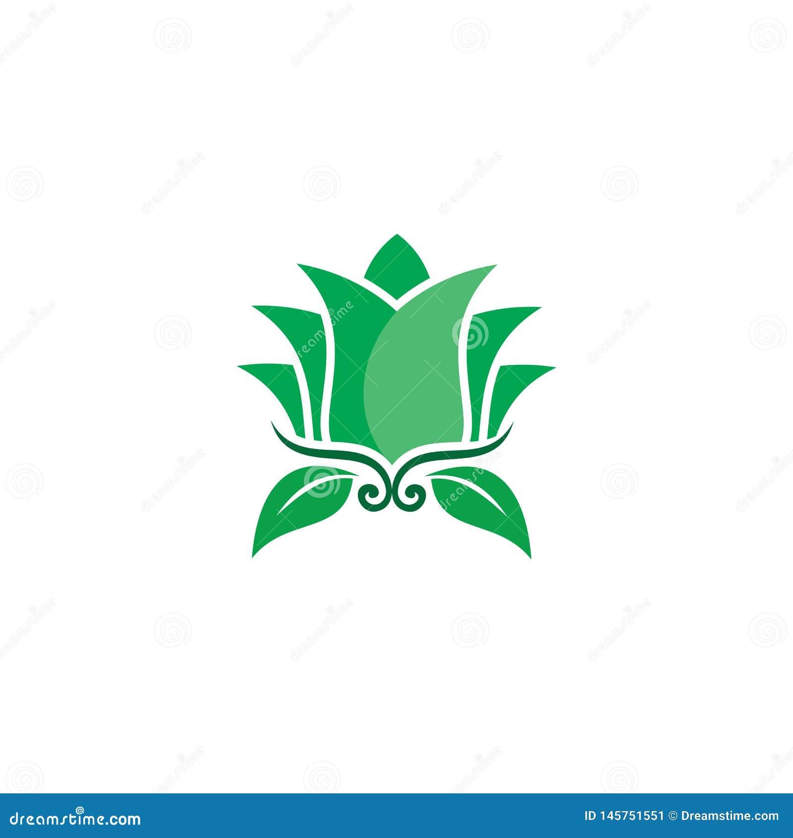 Logotipo de la naturaleza del verde de la flor de Lotus