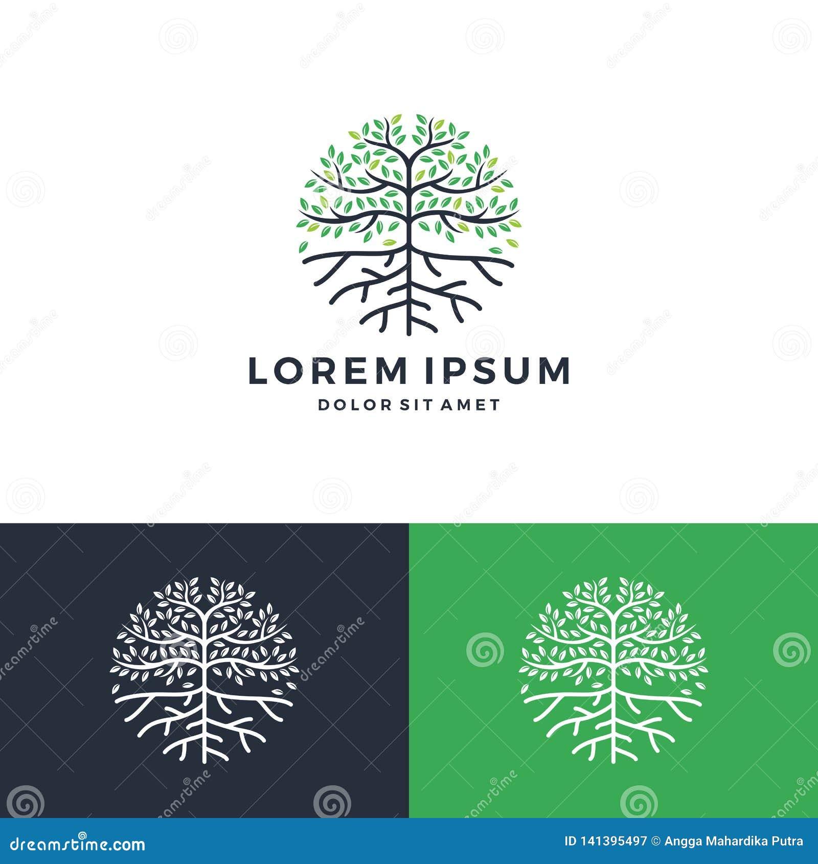 Logotipo del árbol y de la raíz