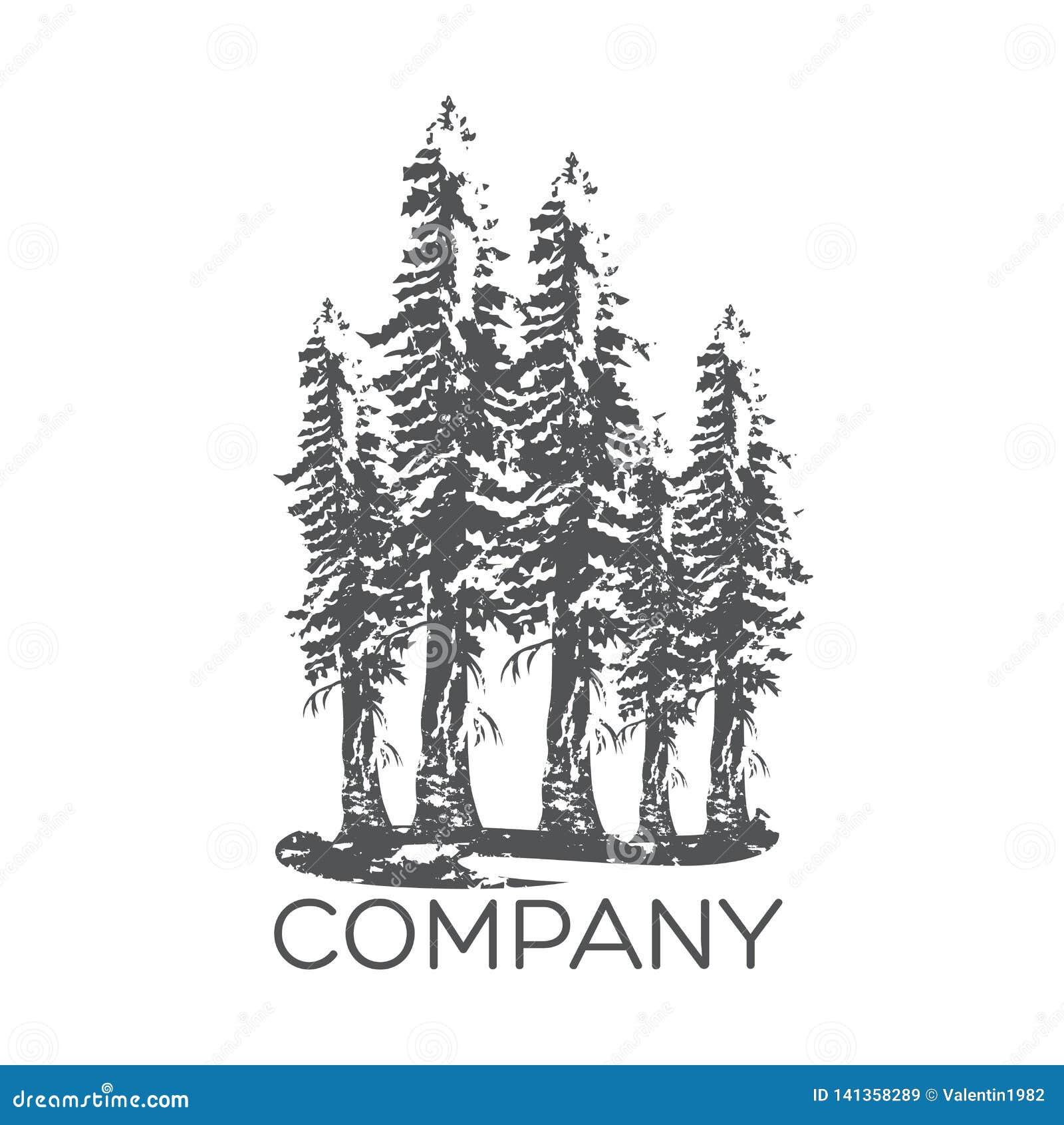 Logotipo moderno da árvore da sequoia Ilustração do vetor