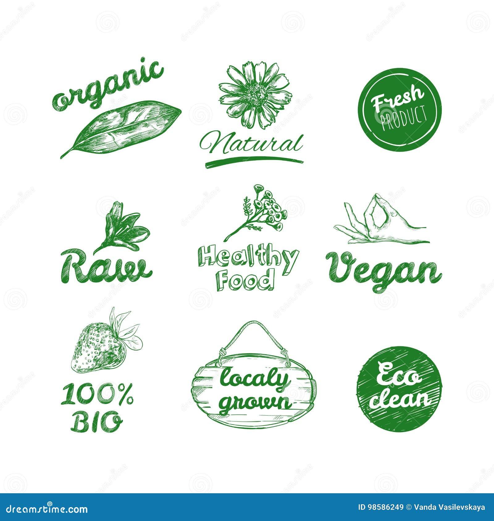 Logotipos dibujados mano del vector Sano coma los logotipos fijados Vegano, comida natural y muestras de las bebidas Mercado de l