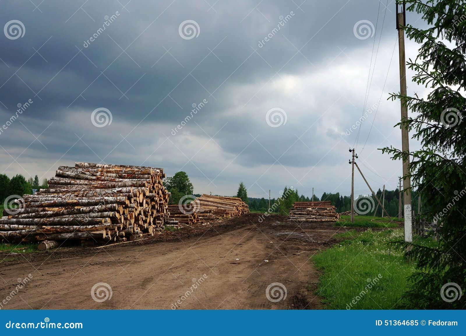 Logs stock photo image