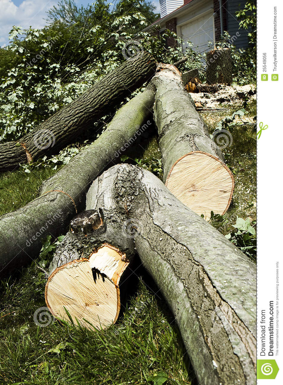 how to cut logs from trees to build home