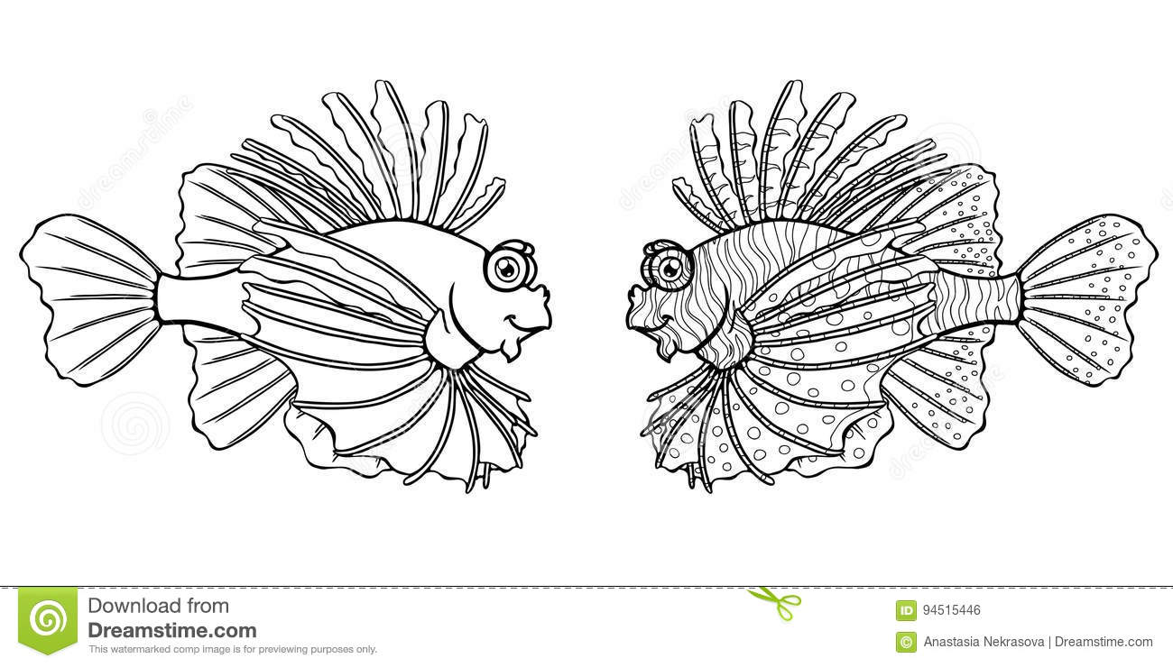 Loinfish On A White Background Stock Illustration - Illustration of ...