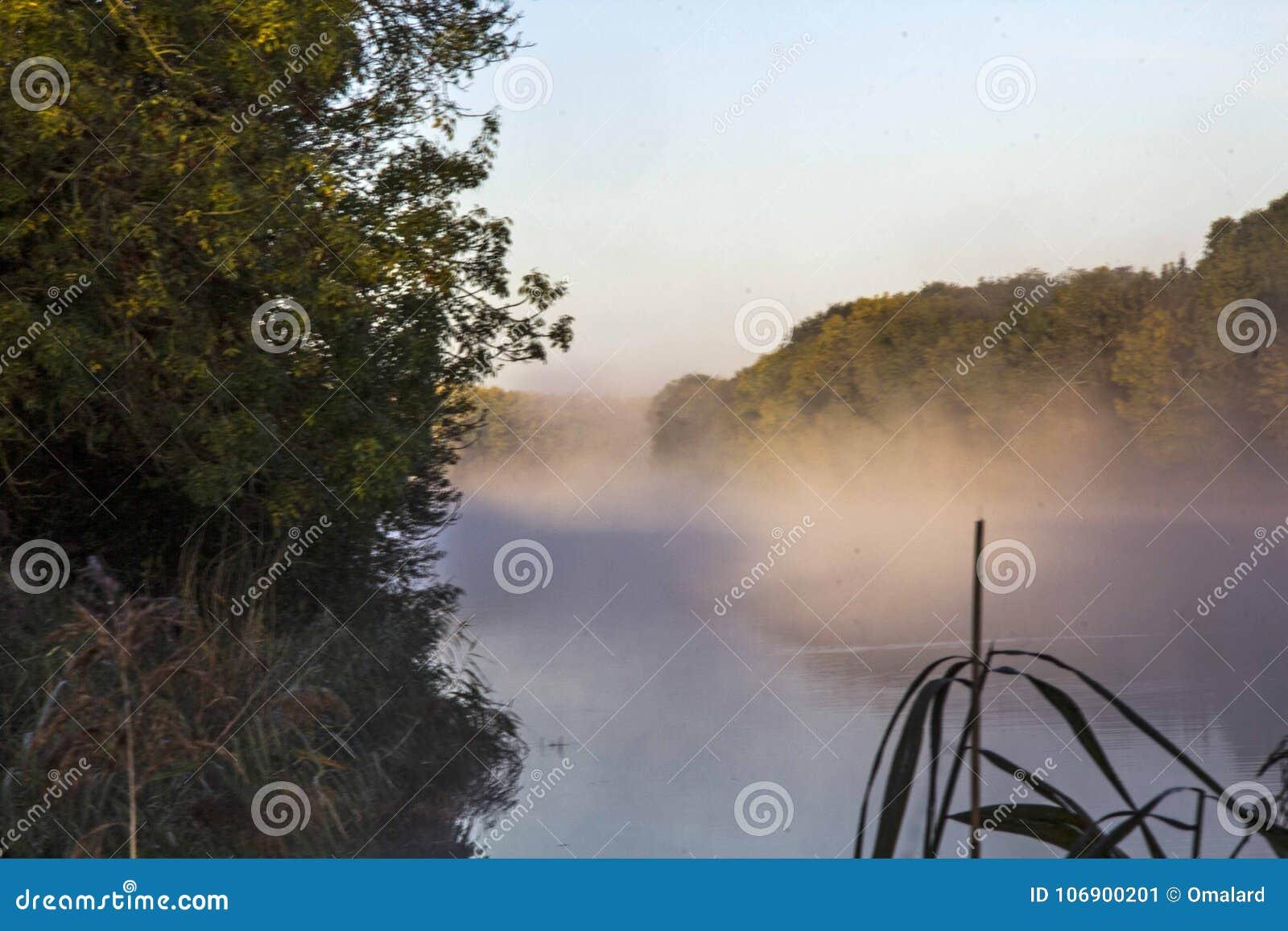 Loire widok rzeczny bagno