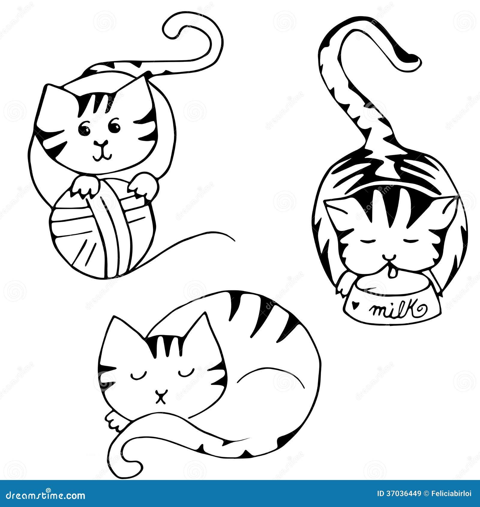 Loisirs de chat