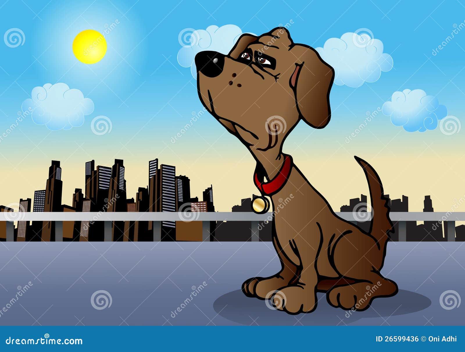 Lojalny pies