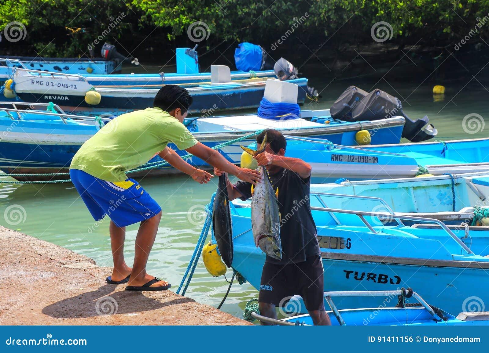 Lokalnego mężczyzna rozładunkowy tuńczyk przy rybim rynkiem przy Puerto Ayora, San