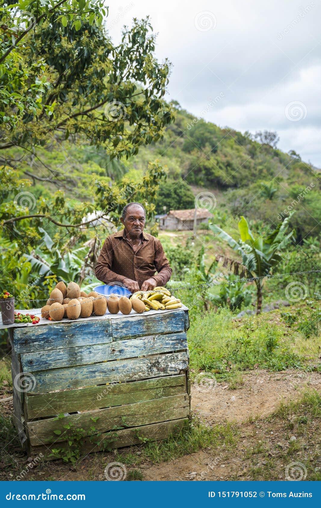 Lokalny fruitseller na stronie droga, Kuba