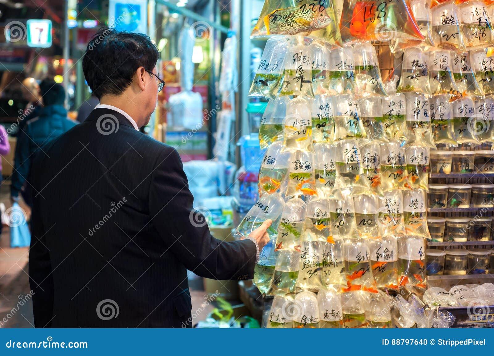 Lokalny mężczyzna egzamininuje tropikalnej ryba przy Hong Kong ` Choi goldfish s Dzwoniącym Ulicznym rynkiem, Mong Kok, Hong Kong