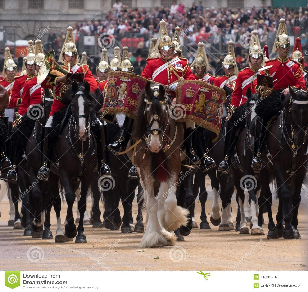 Drum horse with rider, with Household Cavalry behind, taking part in the Trooping the Colour military ceremony, London UK