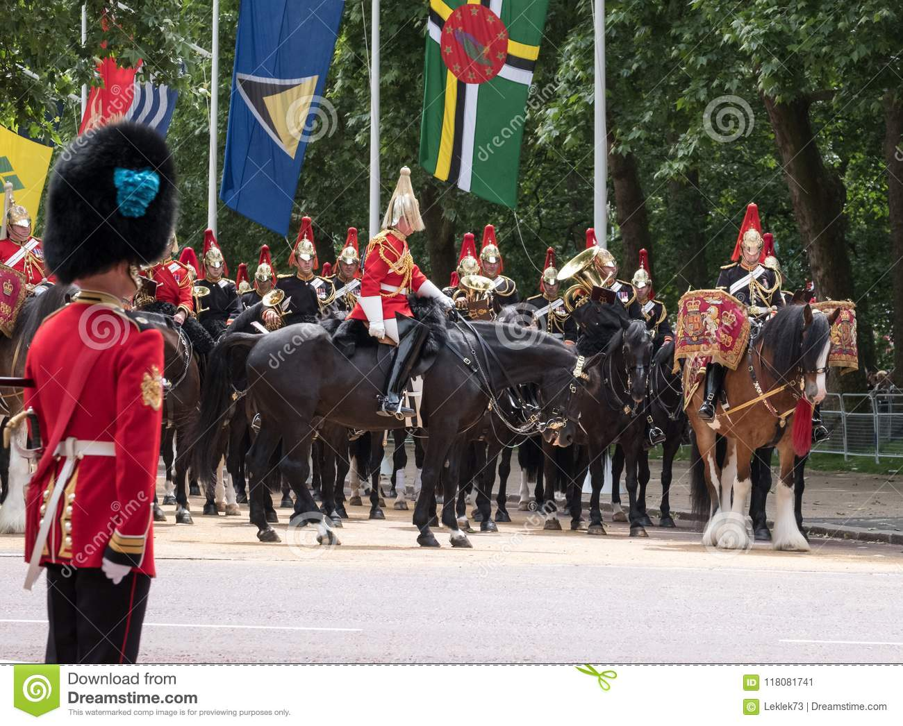 Drum horse with rider, together with Household Cavalry taking part in the Trooping the Colour military ceremony, London UK