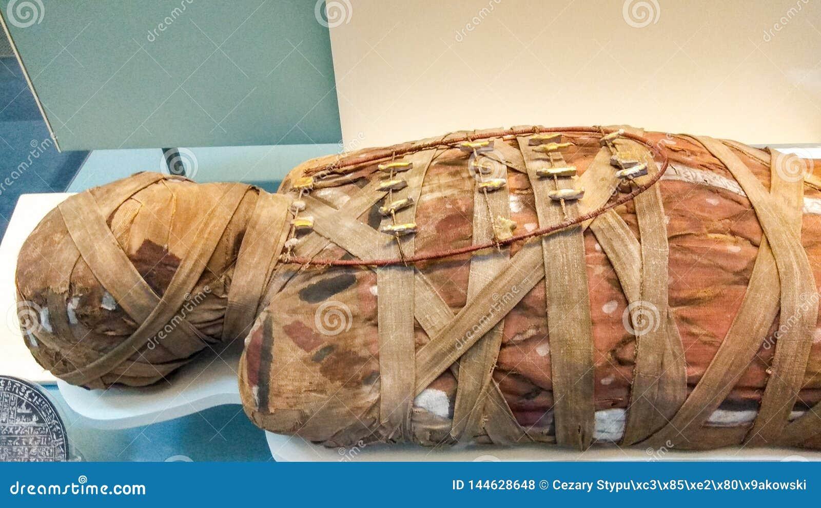 Londyn, Zjednoczone Królestwo/- 03/21/2019: Mamusia w British Museum pokazywać na Egiptian wystawie