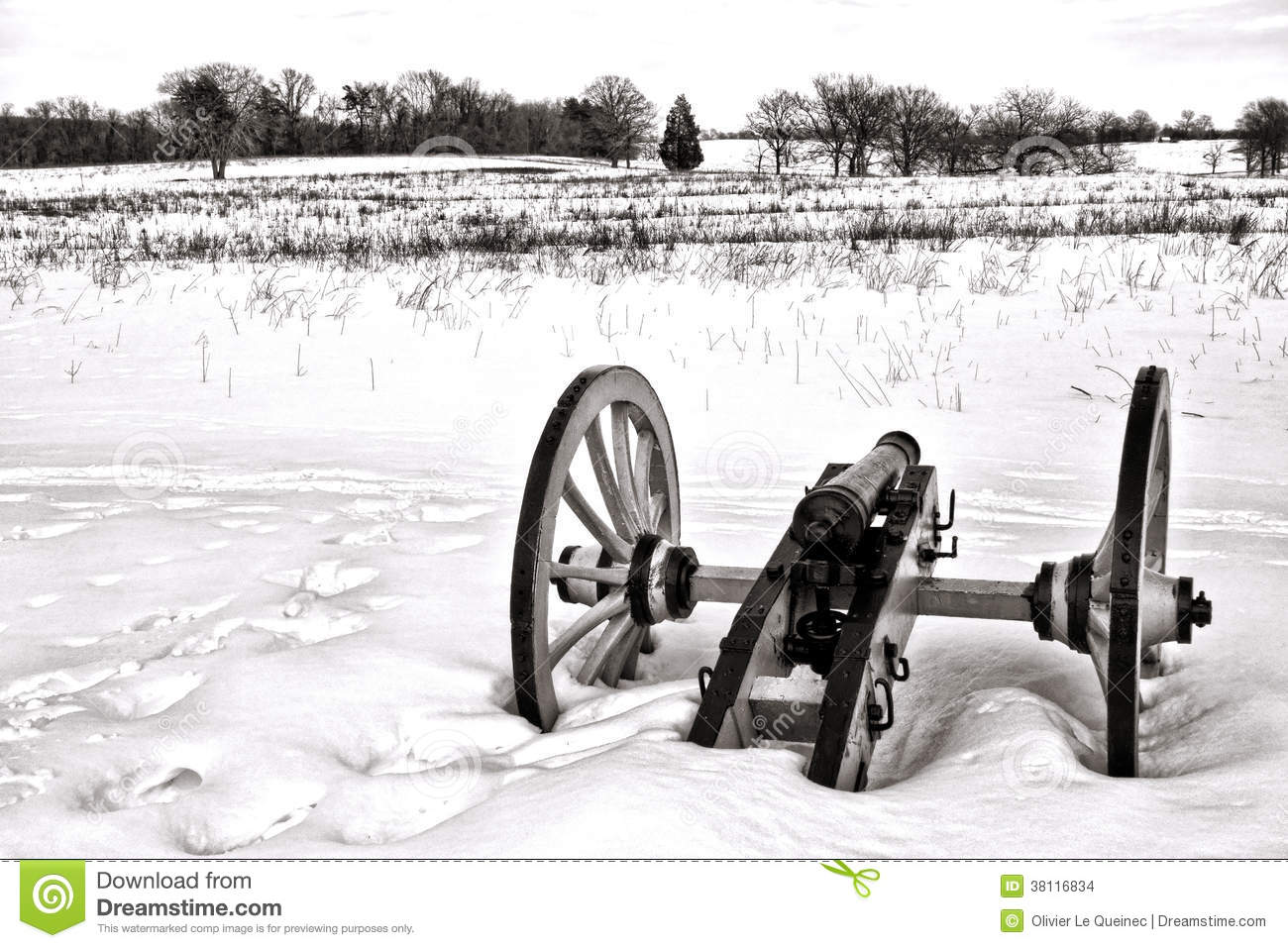 Lone Canon in Field at Valley Forge National Park