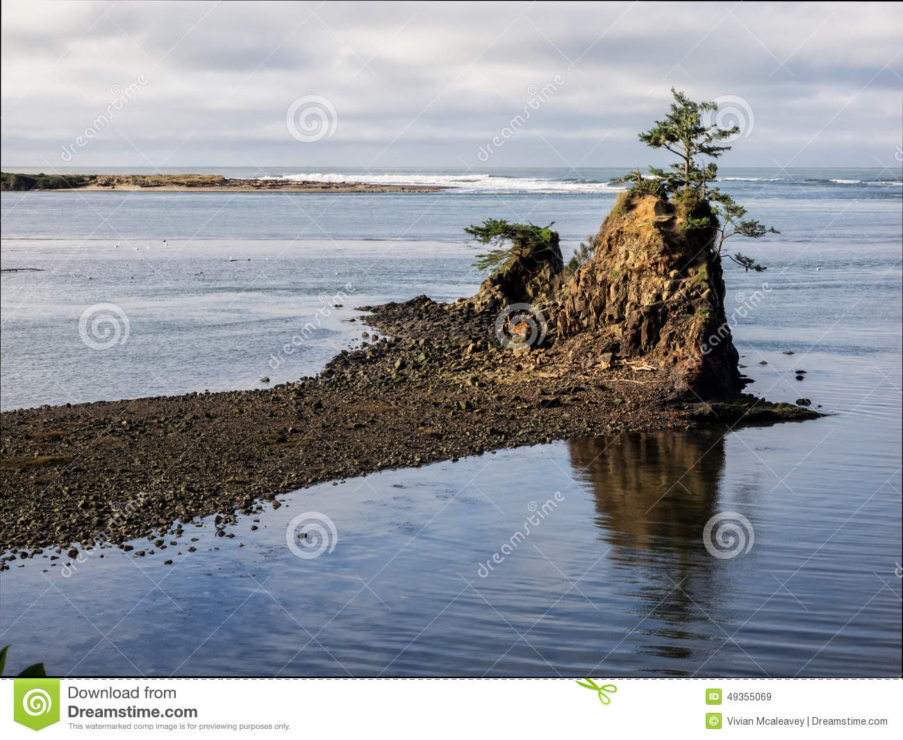 Lone tree on rock at coastal bay stock image for Fishing in lincoln city oregon
