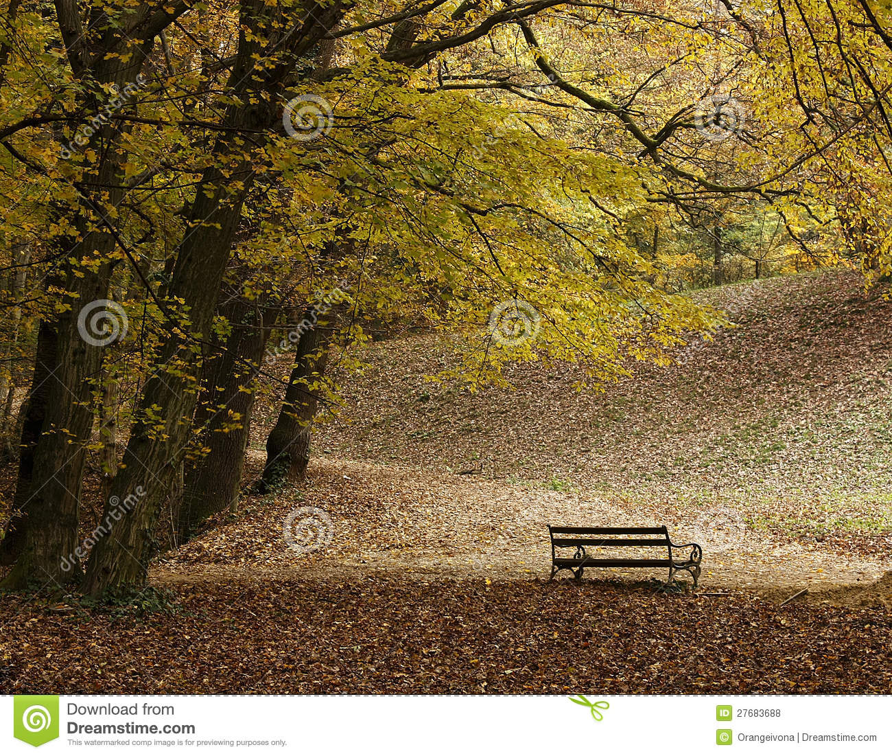 lonely bench in park Maksimir in Zagreb during autumn, a perfect ...