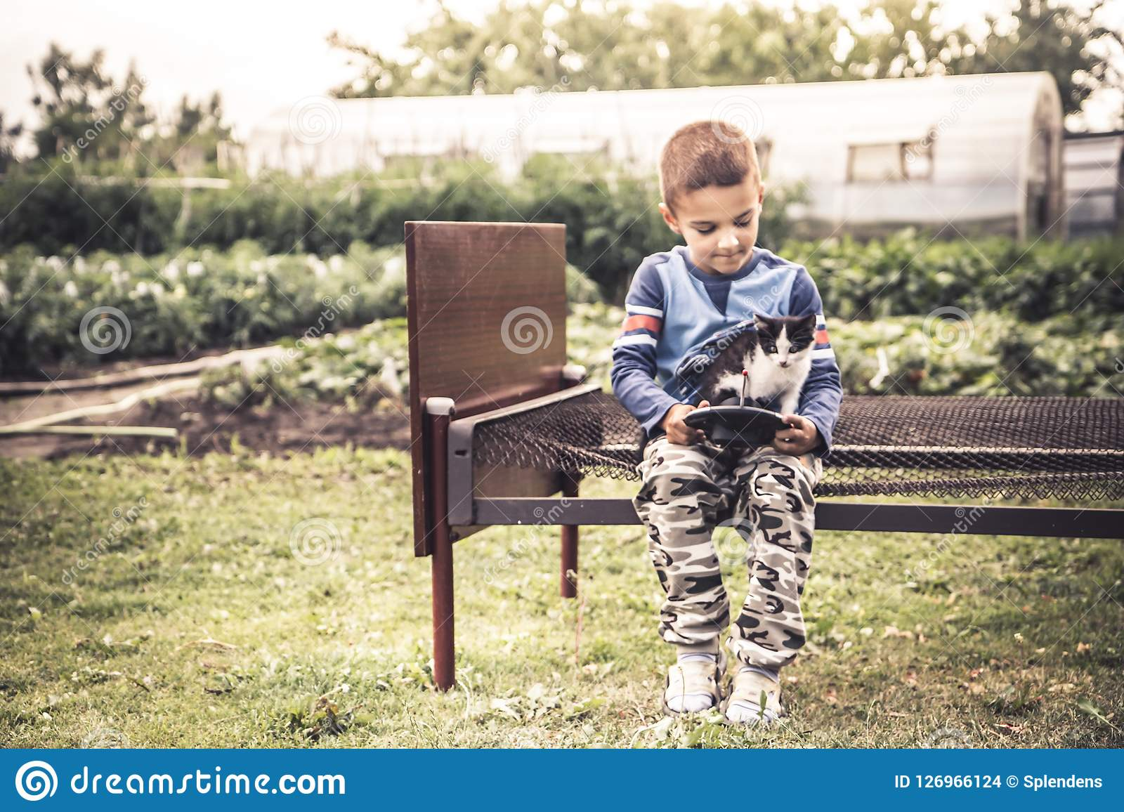 Lonely child kid boy playing kitten countryside lifestyle concept loneliness and pets care friendship