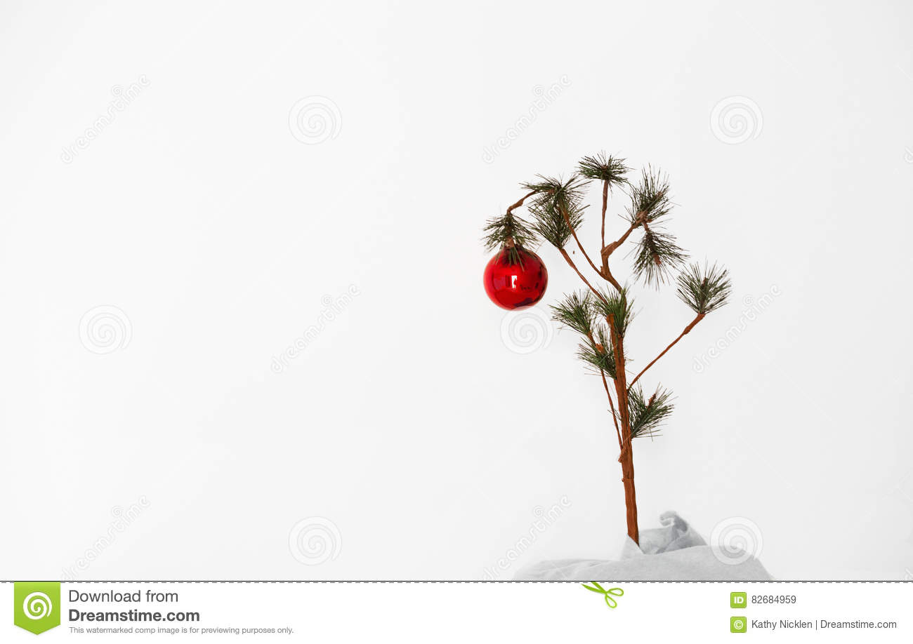 Lonely Christmas.Lonely Christmas Tree Stock Image Image Of Brown Small