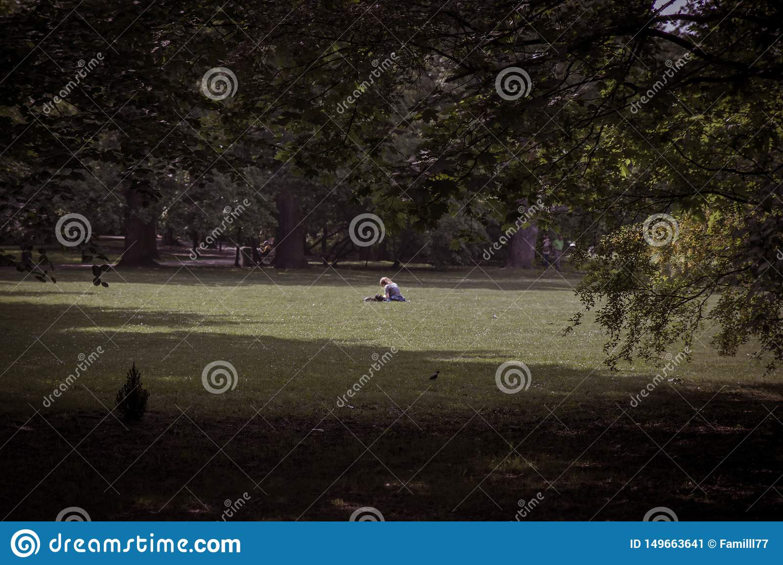 Lonely girl reading book in big park among trees