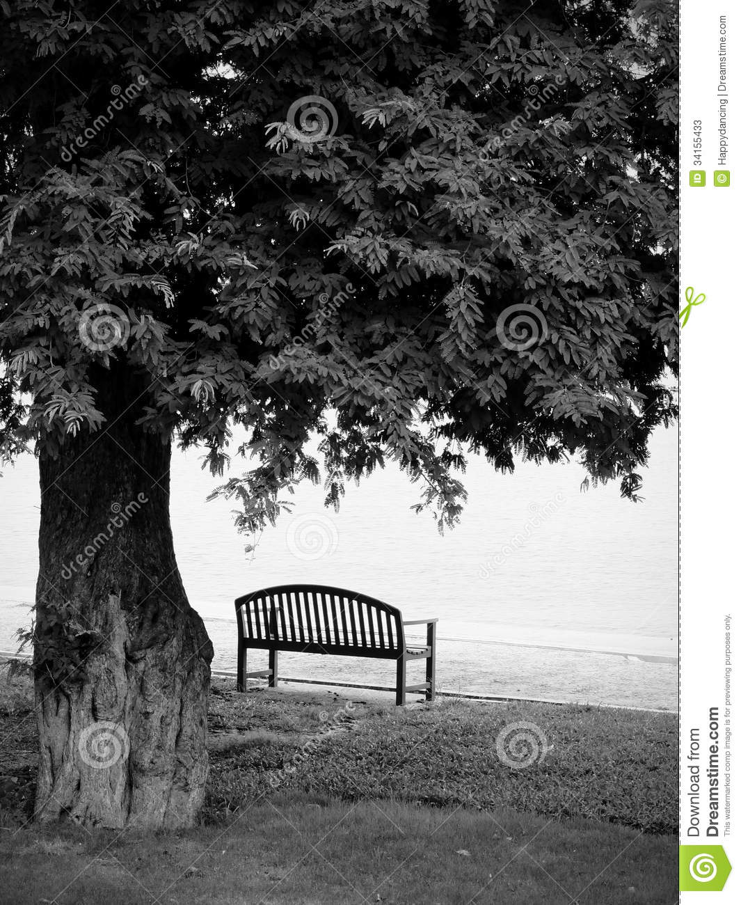 Lonely Park Bench In Black And White Stock Image Image