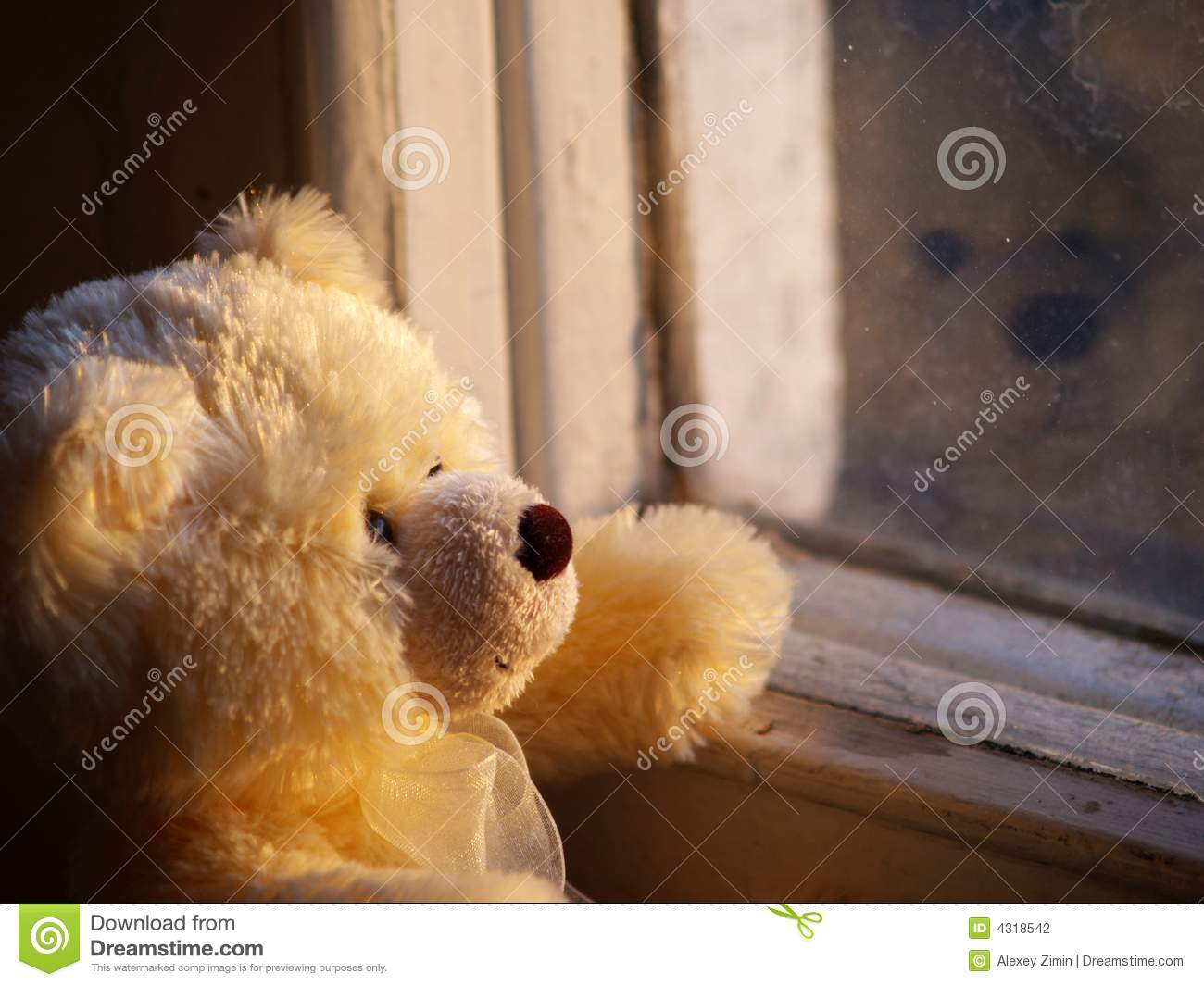Lonely Teddy Bear Stock Photo Image Of Wait Alone Window