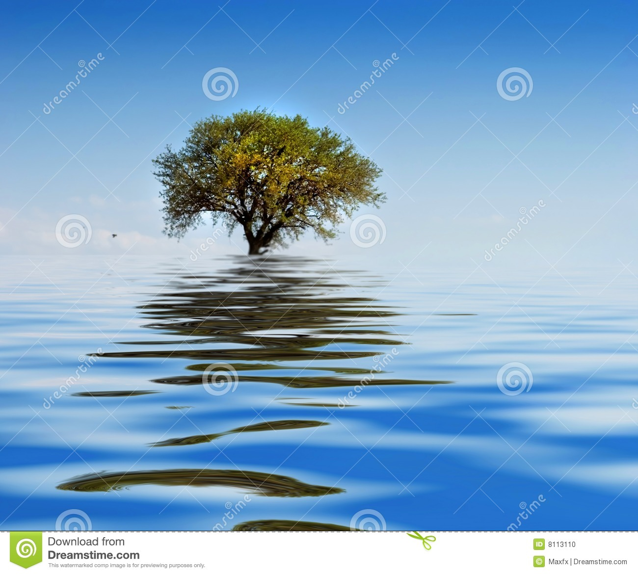 Lonely Tree Water Wavy