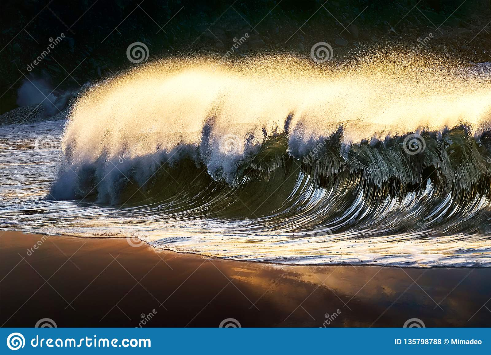 lonely wave breaking at beach