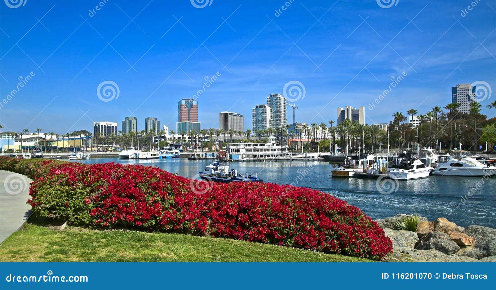 Long Beach Kalifornia pejzażu miejskiego linia horyzontu