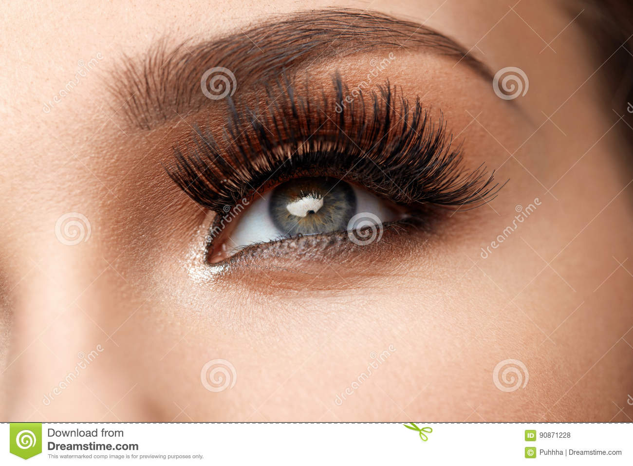 3a56d3eff50 Long Black Eyelashes. Closeup Of Beautiful Female Eyebrow And Big Eye With Fake  Lashes. Woman With Soft Smooth Healthy Skin And Glamorous Professional ...