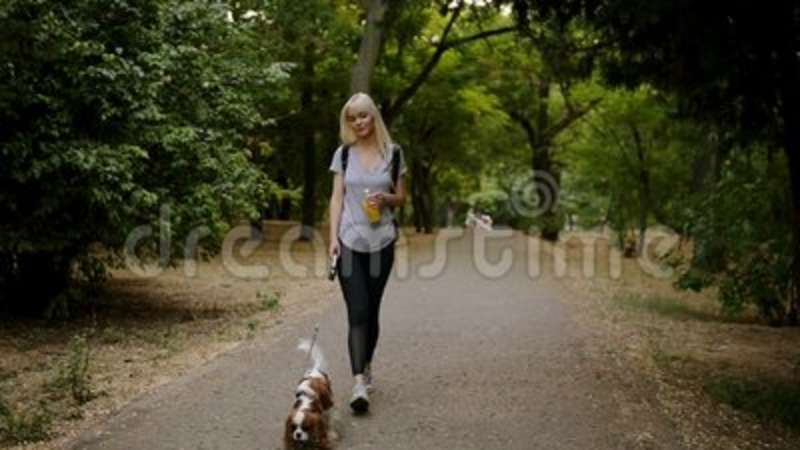 16cf5c10b3bd2 Long Blonde Haired Young Woman In Black Leggings And Backpack Walking By  The Greem Park With Her Pet Leashed - Cavalier Stock Footage - Video of  happy, ...