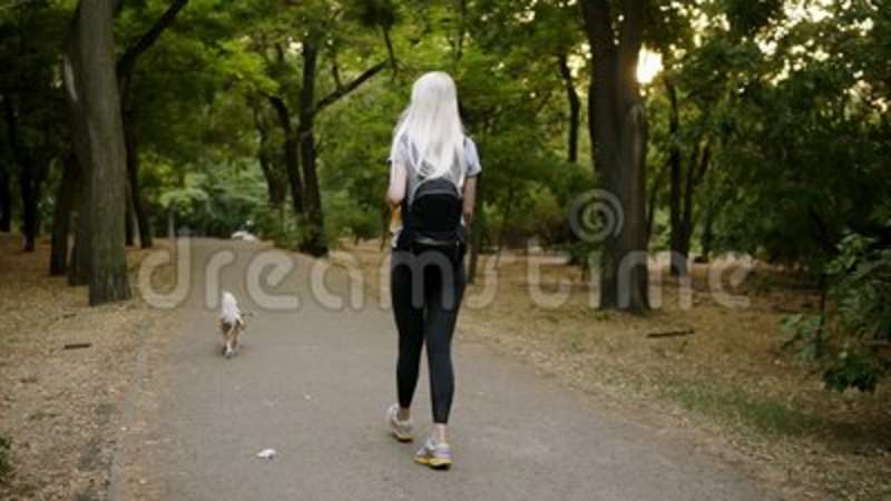 62707592ca5c8 Long Blonde Haired Young Woman In Black Leggings And Backpack Walking By  The Greem Park With Her Pet Leashed - Cavalier Stock Video - Video of  natural, ...