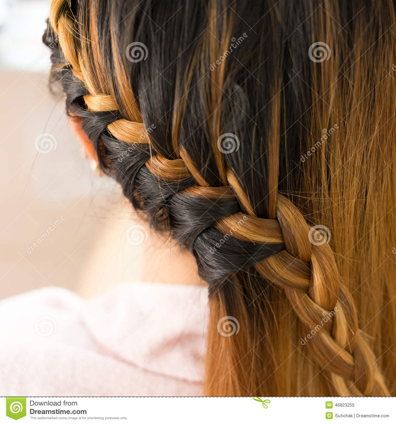 Long Braid Creative Brown Hair Style Stock Image Image Of Creative Person 46823255