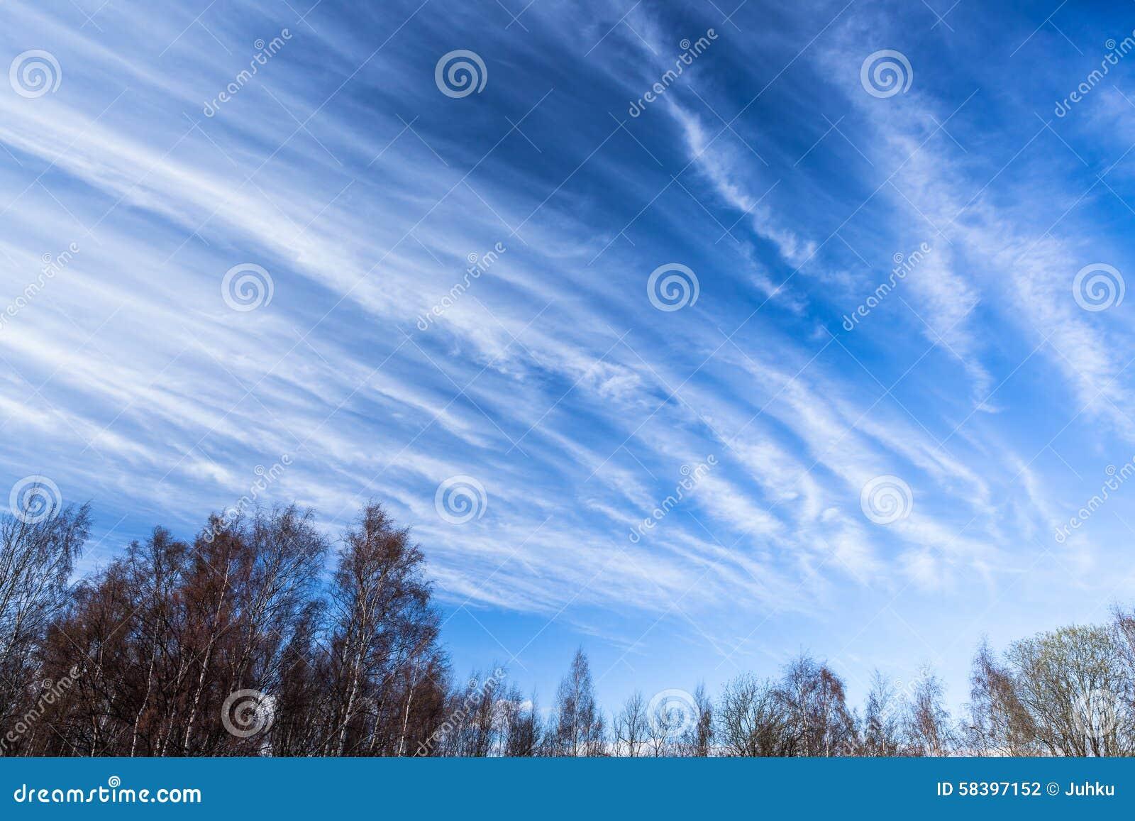 Long ciel de cirrus