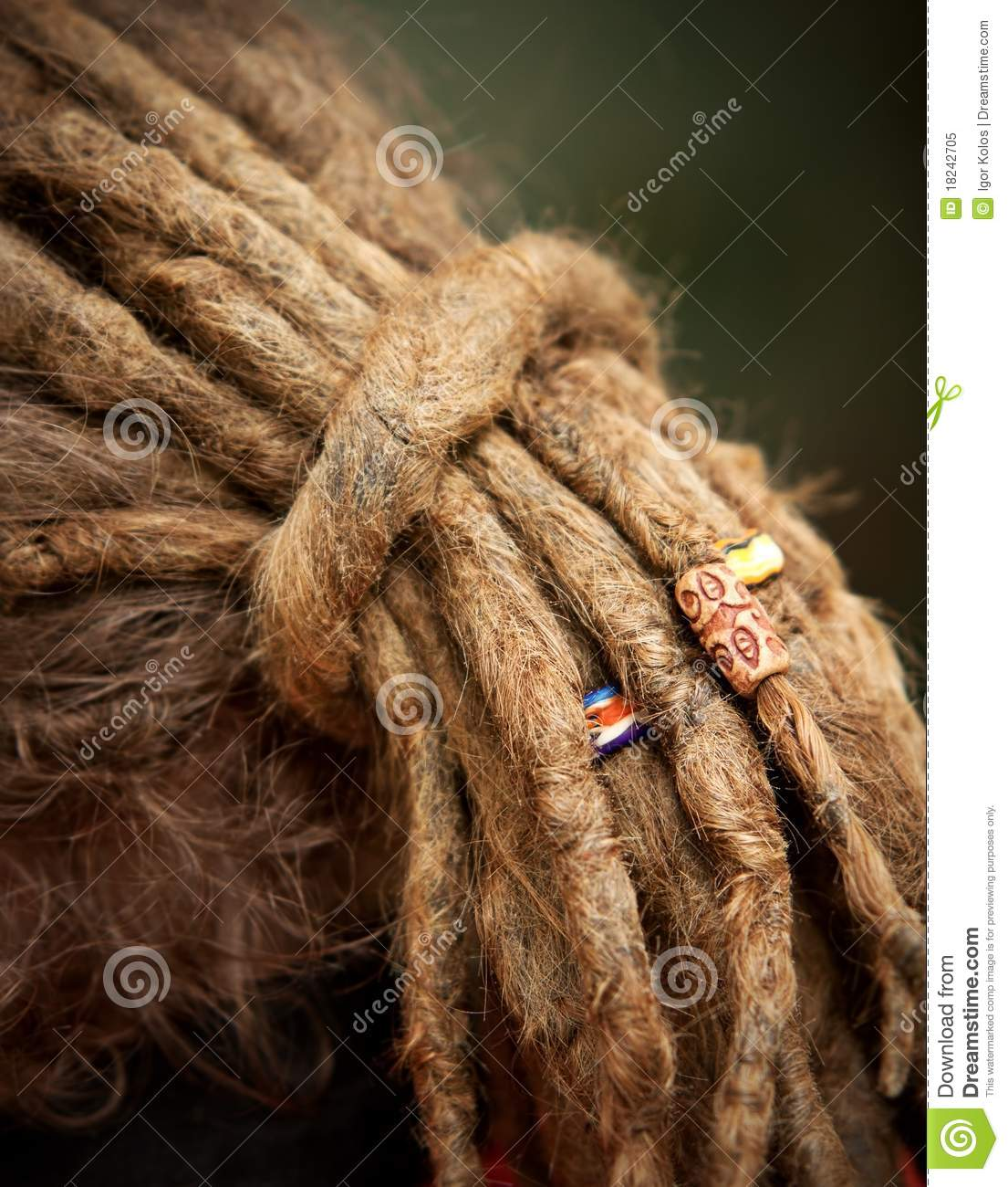 Long dreadlocks stock image. Image of traditional, culture ... Traditional African Fashion Headdress