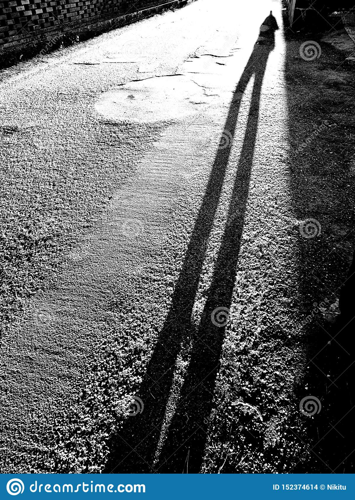 Long shadow in the sunlight before sunset