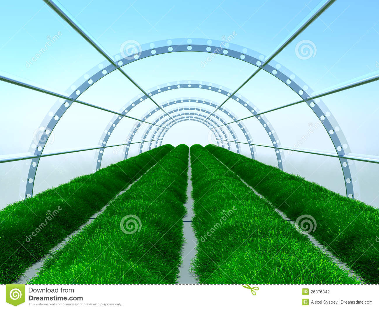 long greenhouse stock illustration  image of horticulture